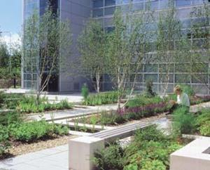 Specialist costs: Landscaping | Magazine Features | Building